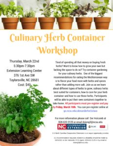 Cover photo for Culinary Herb Container Workshop