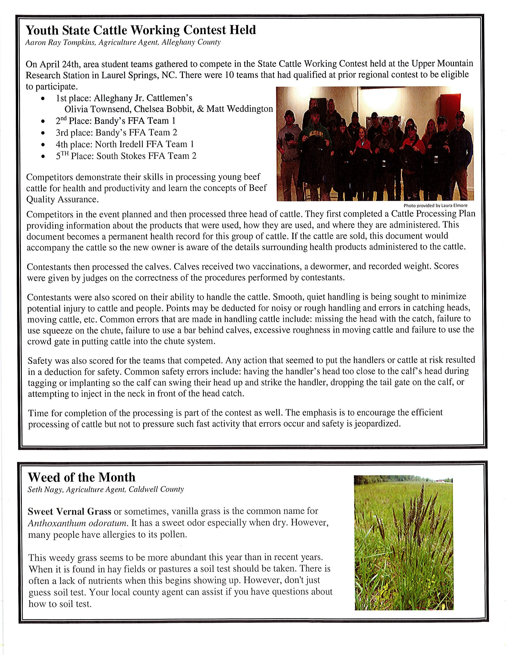 Cattle Call newsletter image 2