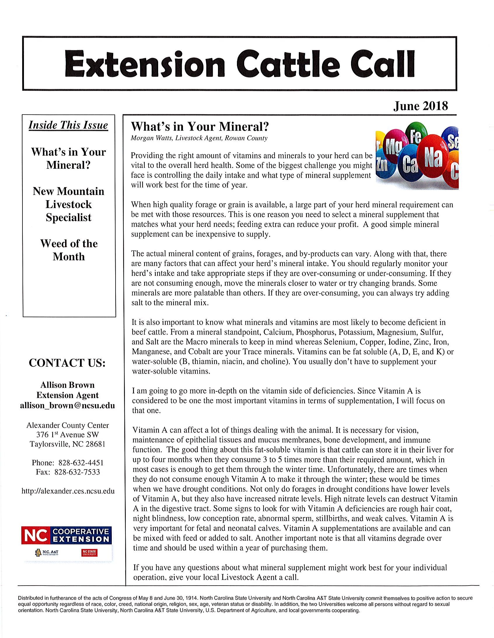 Image of Cattle Call Newsletter page 1