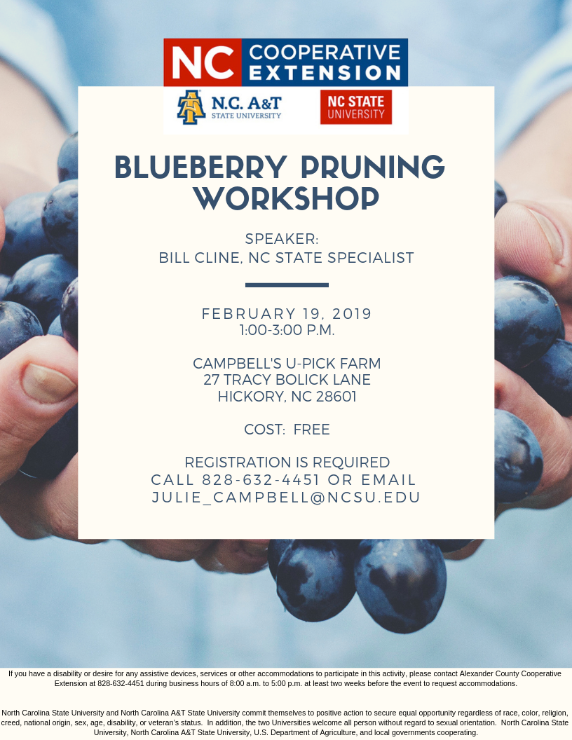 Blueberry Workshop Flyer, February 19 from 1-3 p.m. at Campbell's Upick Farm, 27 Tracy Bolick Lane, Hickory, NC 28601 Cost: free Register by calling 828-632-4451