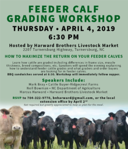 Cover photo for Feeder Calf Grading Workshop