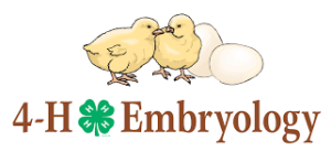 Cover photo for Facebook 4-H Embryology