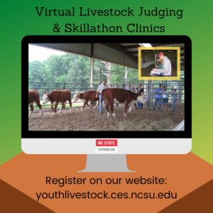 Cover photo for Virtual Livestock Judging & Skillathon Clinics