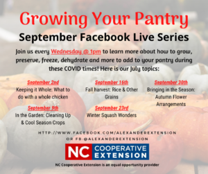Cover photo for September's Growing Your Pantry Series