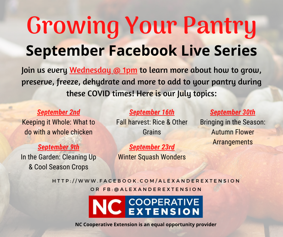 Growing Your Pantry series flyer