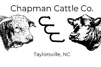Drawing of cattle